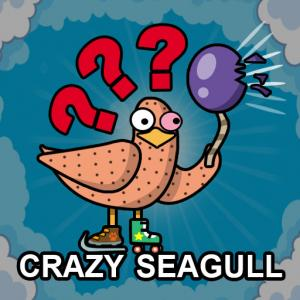 Crazy Seagull