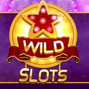 Wild Slot